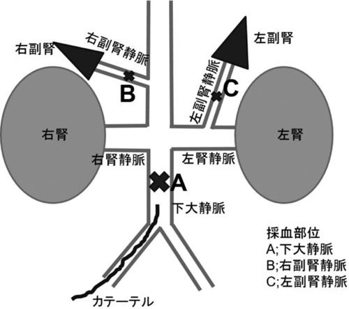 35_2_F4.jpg